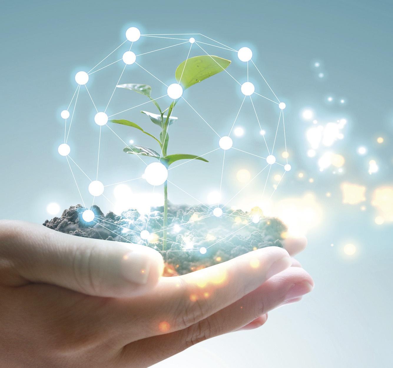 Tecnologia e innovazione nel rispetto dell'ambiente