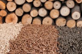 cogen_biomassa_270x180